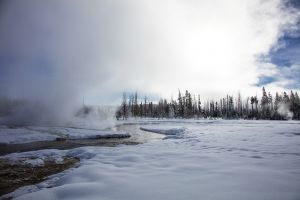 C-0486 Yellowstone National Park