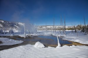 C-0493 Yellowstone National Park